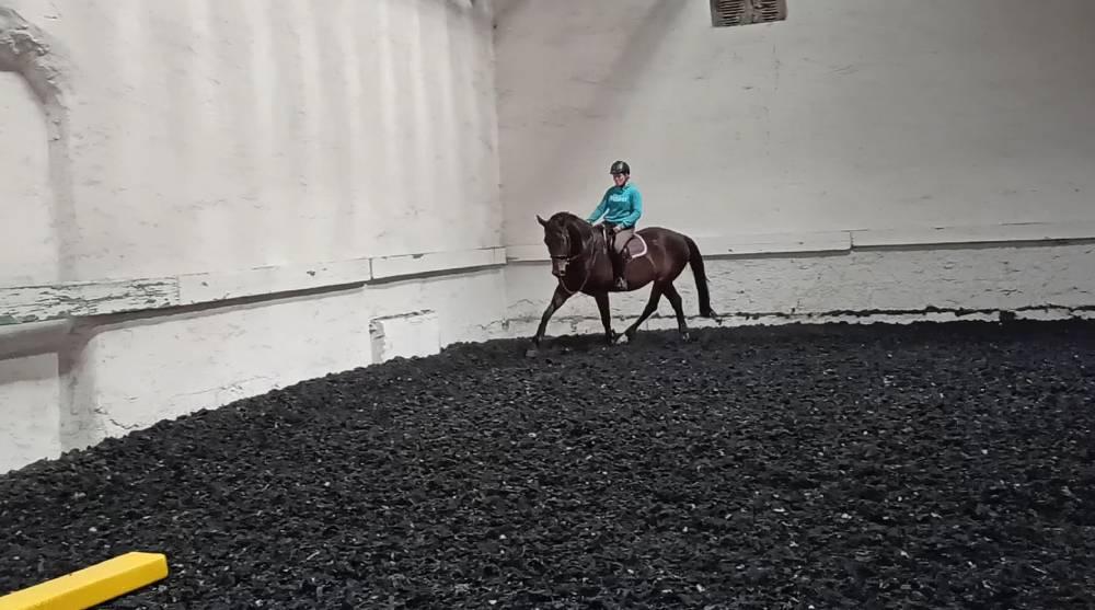 Reiterin auf Pferd in Reithalle